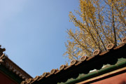 故宮の屋根と空の壁紙
