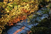 湯滝と紅葉