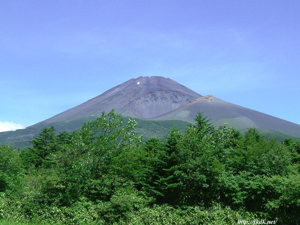 ふもとからの富士山