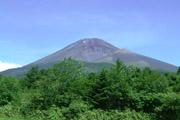 ふもとからの富士山の壁紙