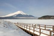 凍結した山中湖と富士山の壁紙