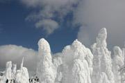 蔵王の樹氷の壁紙