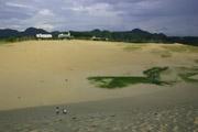 鳥取砂丘1の壁紙