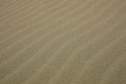 鳥取砂丘の風紋の壁紙