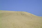 鳥取砂丘3の壁紙