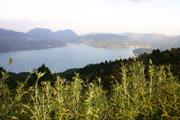 芦ノ湖の壁紙