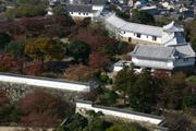 姫路城の天守閣からの壁紙