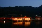 厳島神社ライトアップの壁紙