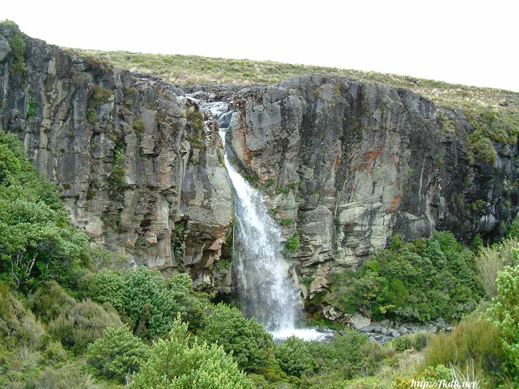 トンガリロ国立公園の画像 p1_32
