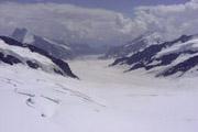 アレッチ氷河の壁紙