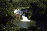 西表島 マリュドゥの滝の壁紙