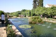 アルカサル庭園の噴水1の壁紙