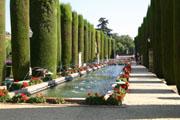 アルカサル庭園の噴水2の壁紙